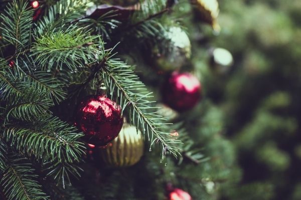 【CDTV】KinKi クリスマスツリーが最高にヤバい!衣装の値段や通販サイトを調査! (1)