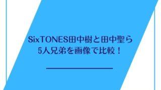 sixtones 田中樹 兄弟
